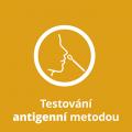 testovani-antigenni-metodou
