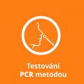 testovani-pcr-metodou